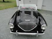 1954 Austin Healey Austin Healey: 100